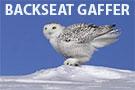 BACKSEAT GAFFER: US Curling Power Rankings - January 3, 2017